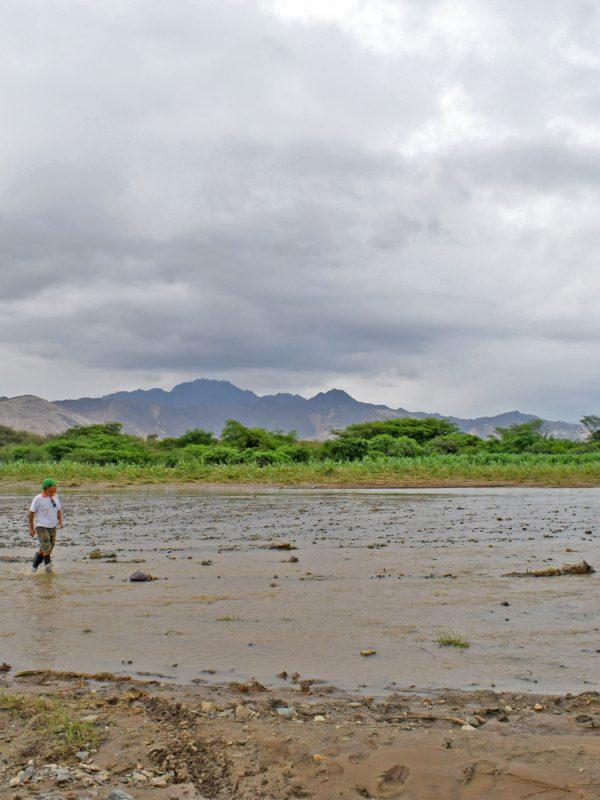 el niño costero en perú cambio climático