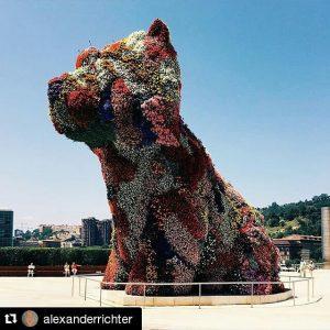 The Guggenheim Puppy by @alexanderrichter