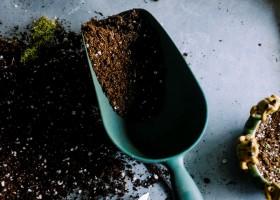 jardines en azoteas