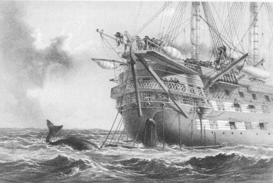 whale-with-agamemnon-ship