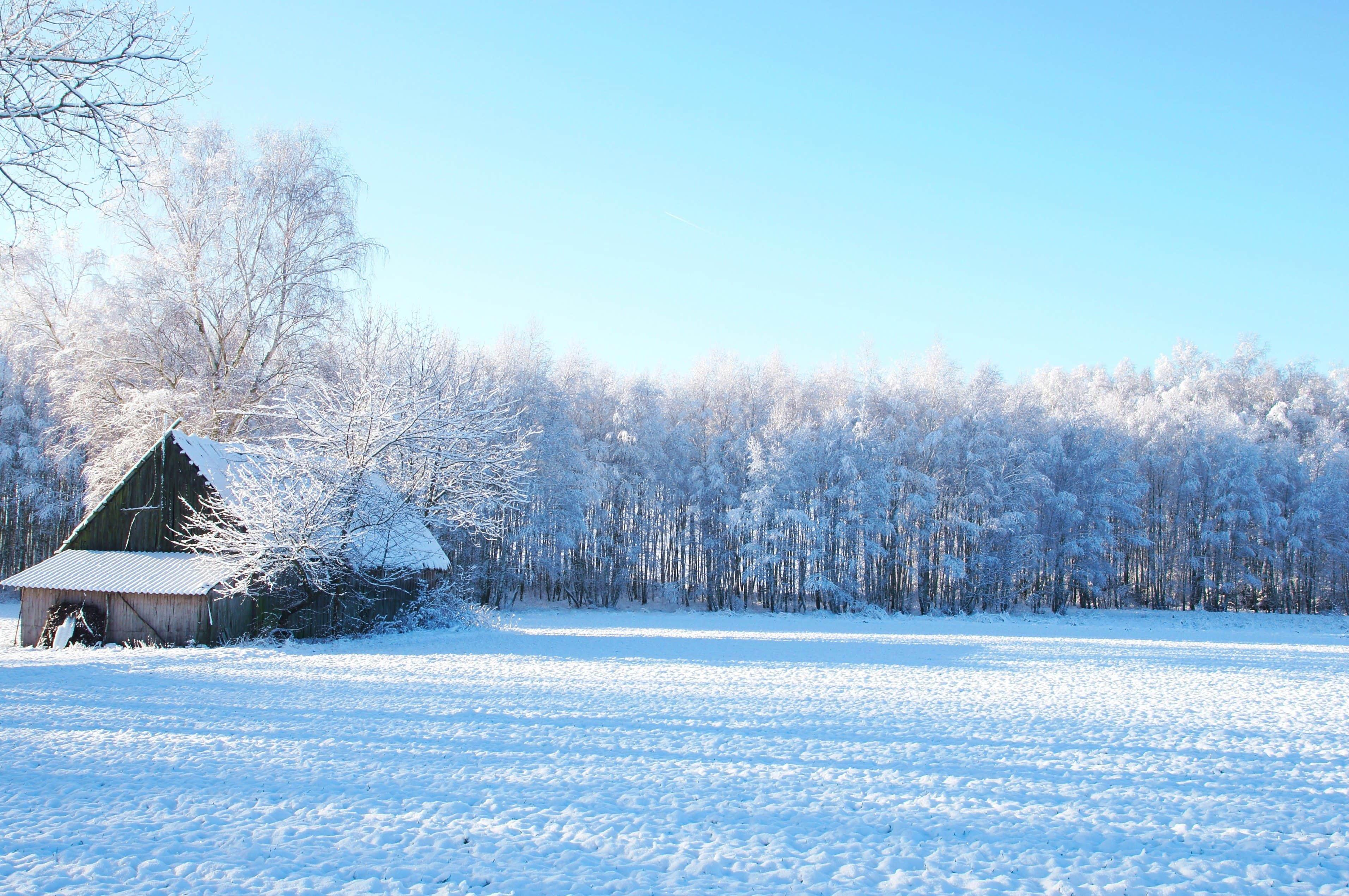 arquitectura tradicional casa en invierno