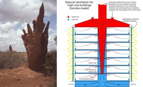 arquitectura biomimetica termitero