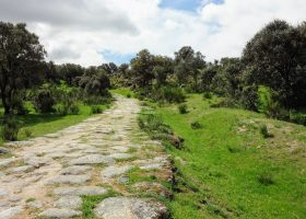 Image of a Roman road with stone and grass