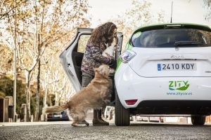 Zity electric sharecar