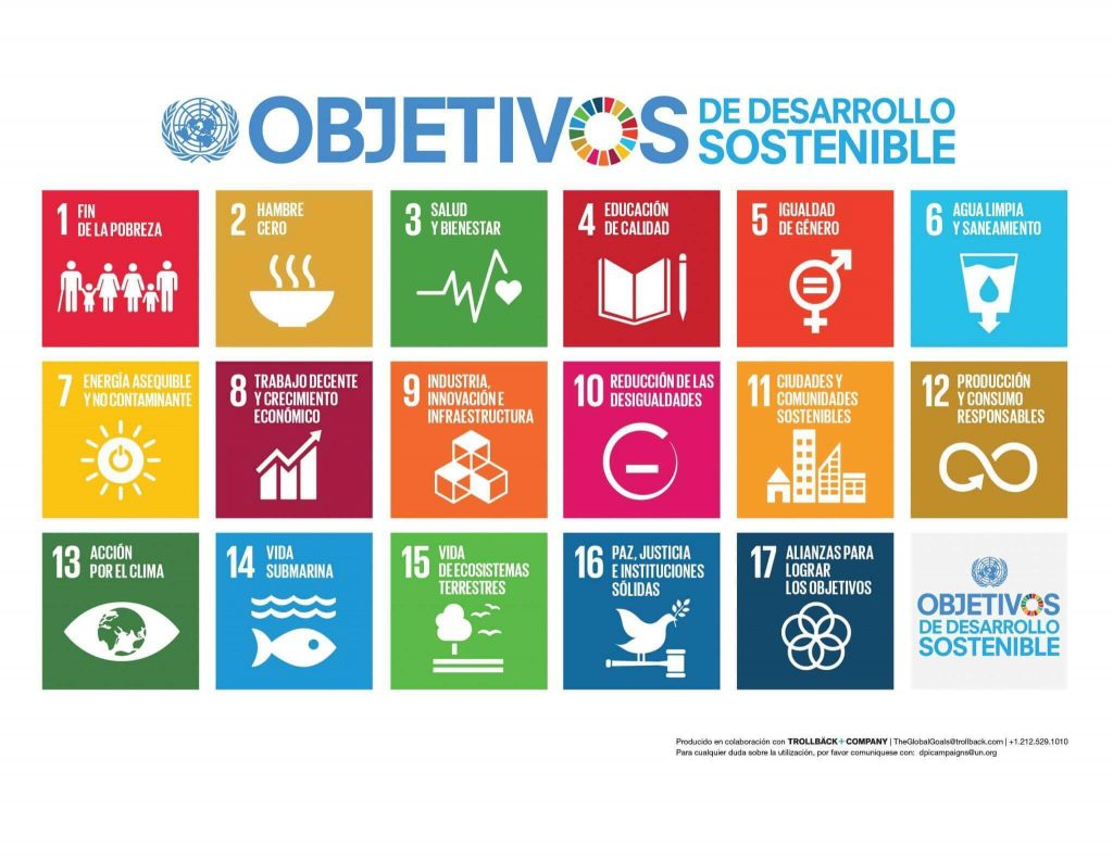 Infographics showing the 17 SDGs