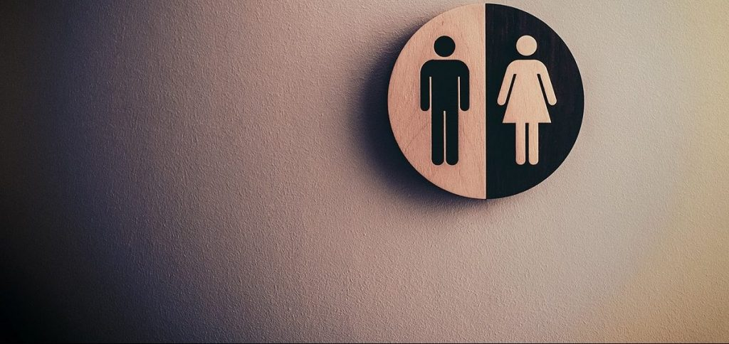 Distinto wc de mujeres y hombres