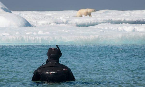 buceando en el Artico