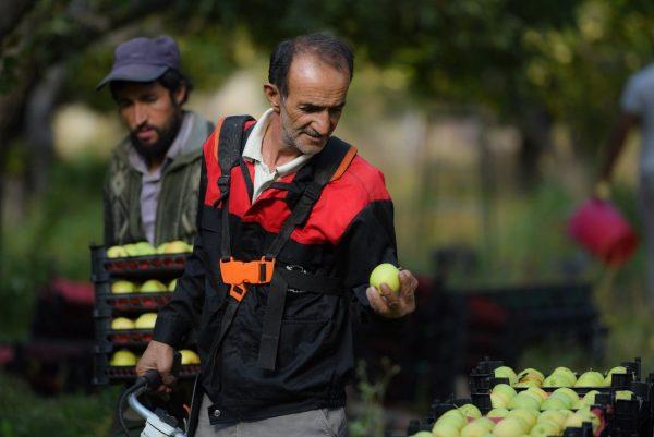 Farmers in Iran