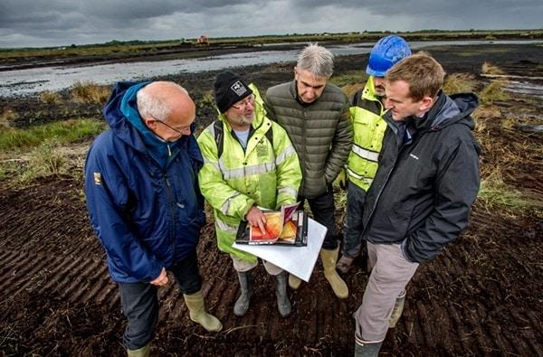 restoration of peatland