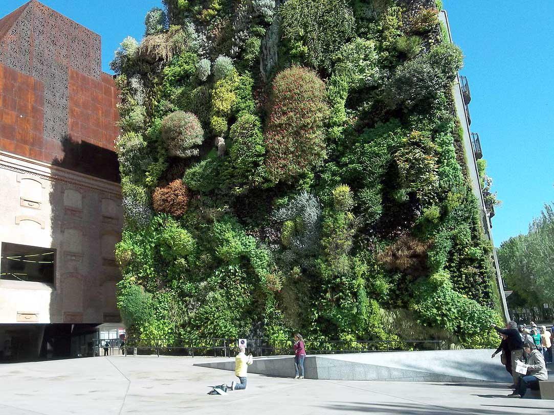 caixaforum-madrid-jardin