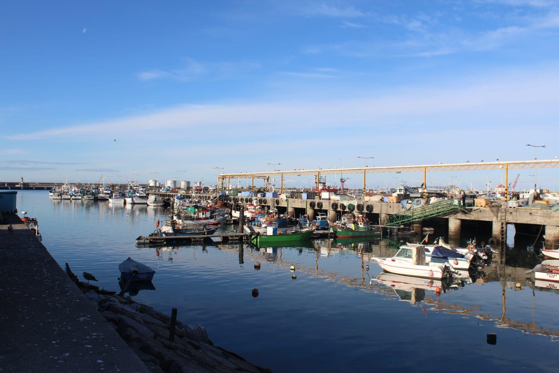 gestión de residuos y limpieza puerto matosinhos