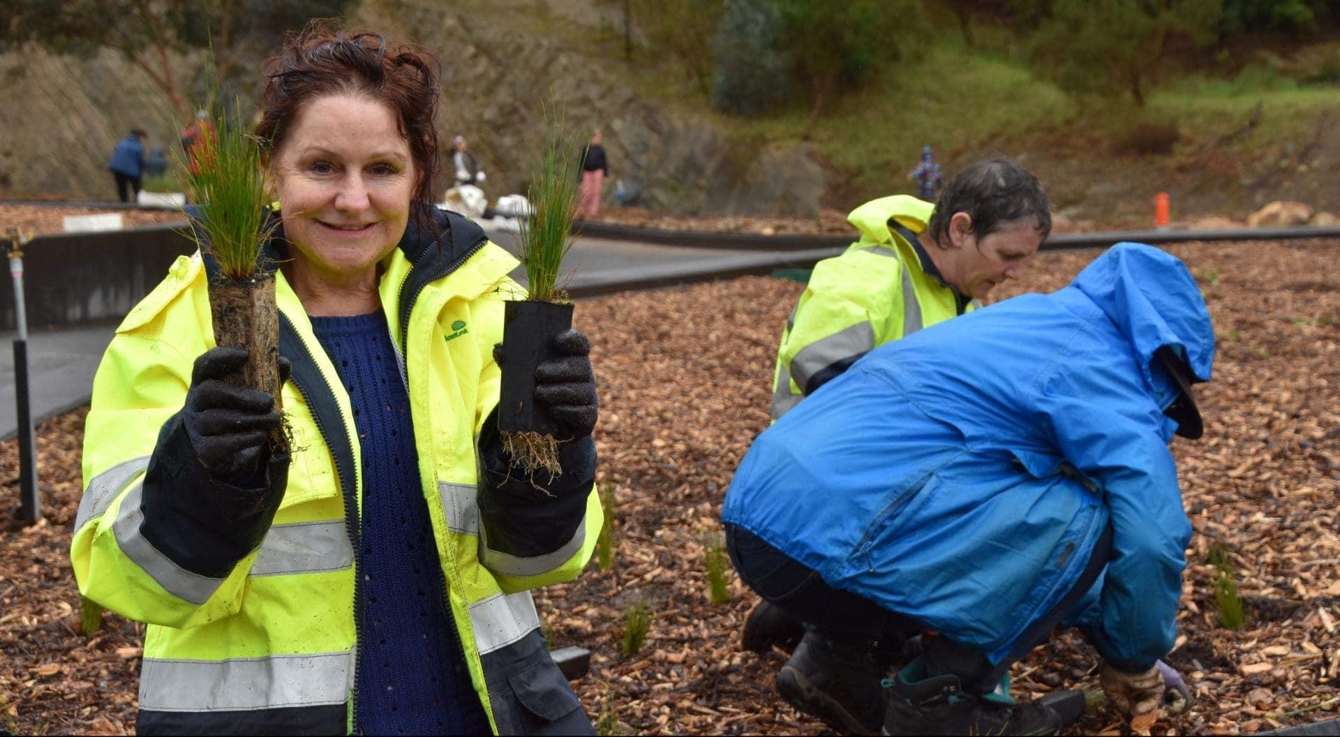 Imagen de los voluntarios trabajando en el proyecto del tejado verde