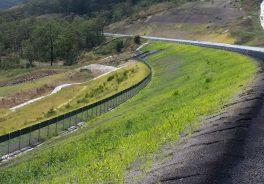 Protección Medioambiente Carretera Toowomba Australia Ferrovial Conservacion Naturaleza Premio